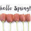 Hello Spring! Time For Updates & Some Instagram